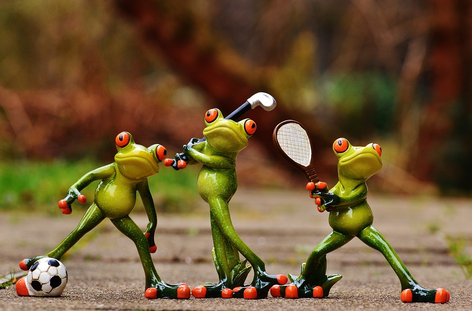 Funny sporty frogs